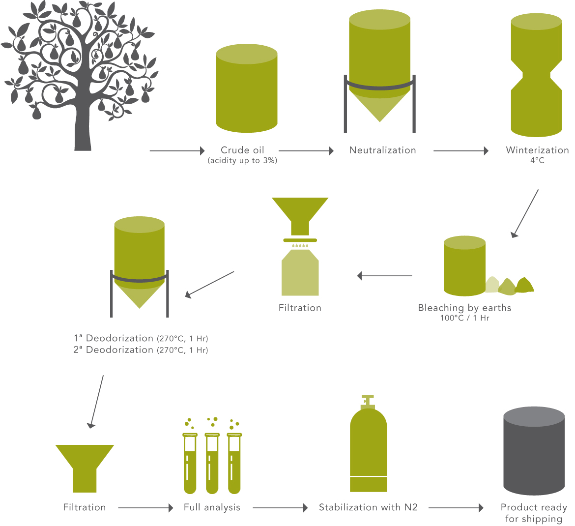 Avocado Oil Production